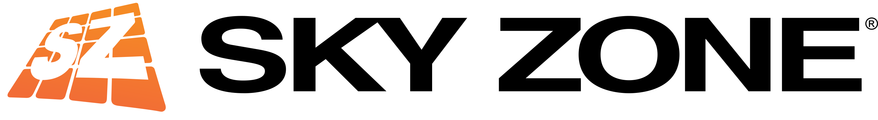 SkyZone Logo
